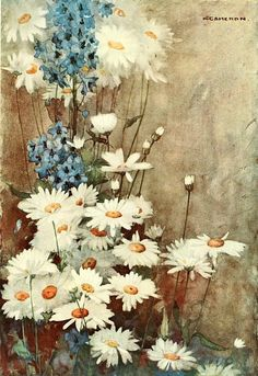 Katherine Cameron - Daisies and Delphiniums (The Flowers I Love) 1917