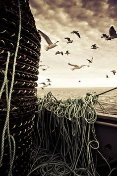 crabfishing
