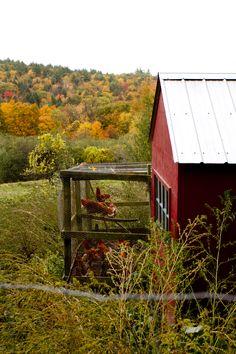 Rikki Snyder Photography   Blog   The Hill