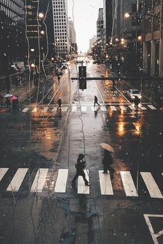 rain. city​​. wet streets. pedestrians. road