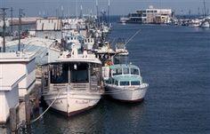 Shrimp boats,fishing boats,Seabrook,Clear Lake,Galveston Bay,Texas Gulf Coast,fine art photograph,Ruth Burke photography,Kemah,seascape,landscape