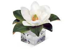 12'' Magnolia in Vase, Faux on OneKingsLane.com