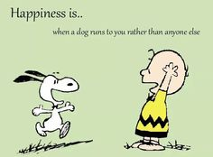 Sadly mine passes me and goes straight to my husband🙁 Peanuts Cartoon, Peanuts Snoopy, I Love Dogs, Puppy Love, Charlie Brown Characters, Snoopy Images, Snoopy Wallpaper, Snoopy Quotes, Wire Fox Terrier