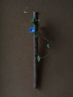 一花一葉 by アツシ Morning glory ikebana.