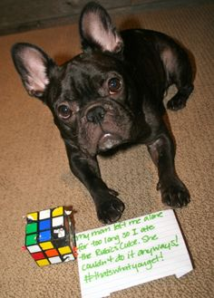 Smarter than YOU  My mom left me alone for too long so I ate the Rubik's Cube. She couldn't do it anyways! #thatswhatyouget!