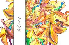 Lilies Graphics Beautiful pencil drawing of lilies. Hand drawn illustration for your graphic design.  - 3PNG by Ann Astro