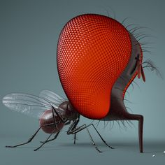 SNIF New Work, Insects, Bee, Behance, Gallery, Illustration, Animals, Check, Stone