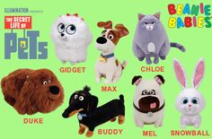 Ty has launched Beanies and Beanie Buddie for characters from The Secret Life of Pets