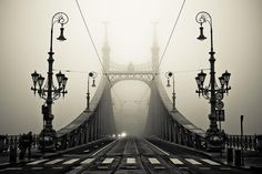 This just happens to be my favorite bridge in Budapest! The Liberty bridge over the Danube, Budapest, Hungary Mundo Design, Pretty Pictures, Cool Photos, Random Pictures, Amazing Photos, Vintage Pictures, Nature Pictures, Girl Pictures, Liberty Bridge