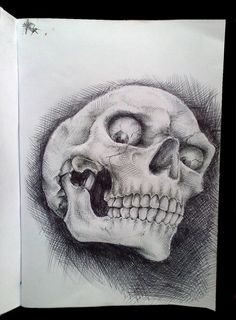 Ball-point pen,freestyle on A5 paper used a reference for the skull..