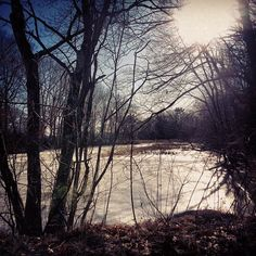 #Winter is such a beautiful time! #FranklinMA #InsuranceAgents #Massachusetts #NewEngland