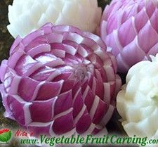 Onion Flower Video Lesson