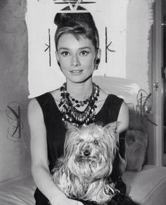 Audrey Hepburn & Mr Famous a yorkie Old Hollywood Stars, Vintage Hollywood, Classic Hollywood, Audrey Hepburn Mode, Audrey Hepburn Photos, Aubrey Hepburn, Divas, My Sun And Stars, Belle Photo