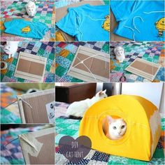 DIY Cat Tent - old tshirt and hangers :)