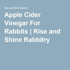 Apple Cider Vinegar Rinse for Greasy Hair - Humblebee & Me Flea Remedies, Natural Remedies, Apple Cider Vinegar Fleas, Foods Bad For Dogs, Lionhead Rabbit, Pet Rabbit, Vinegar Hair Rinse, Greasy Hair Hairstyles, Flea Treatment