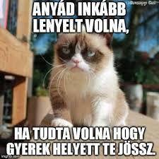 """Képtalálat a következőre: """"grumpy cat magyarul felirattal"""" – Fun Memes Humor, Cat Memes, Funny Jokes, Hilarious, Ecards Humor, Funny Sayings, Meme Comics, Animal Jokes, Funny Animals"""