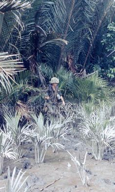 """Gordon Birdsell, Alpha, 2/39th - Plain of Reeds, 1968. Birdsell was killed a few months after this picture was taken. He was one of the smallest guys in the company, but he humped the M-60. Captain Harden once said that """"Birdseed"""" may have been the smallest man in the company, but he was all heart."""