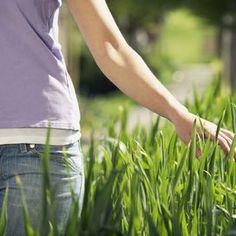 sii presente:   STARE BENE È UN ESERCIZIO QUOTIDIANO un'amica, il nuovo vaso di fiori di cui  prenderti cura: quante sono le cose che ci fanno sorridere?