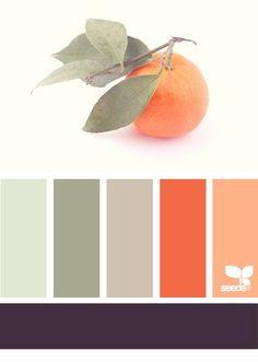 Greys, orange, peach - color palette