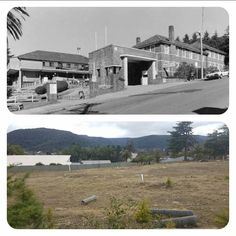 ? Local History, Blue Mountain, Westerns, Australia, Mountains, Mansions, Park, Country, House Styles