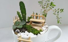 Simply How To Make A Fairy Garden With Teacupscraft Projects on Garden Teacup Mini Garden Ideas Fairy Garden Pots, Fairy Garden Houses, Garden Art, Indoor Mini Garden, Indoor Fairy Gardens, Succulents Garden, Planting Flowers, Teacup Crafts, Fairy Garden Accessories