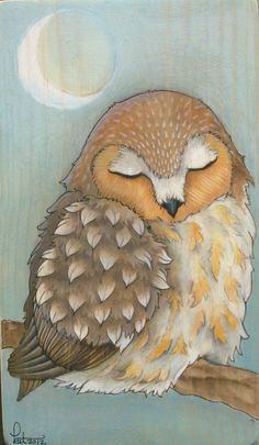 May be my favorite so far ... Kat Wedmore's Northern Saw-Whet Owl, Watercolor, colored pencil and archival ink on pine wood panel. Original, one-of-a-kind artwork.. $40.00 USD, via Etsy.