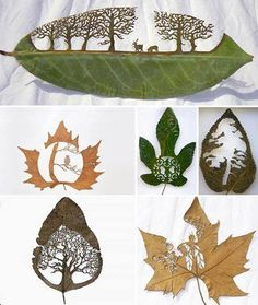 Extraordinary leaf artwork, by Lorenzo Duran. He washes, dries and presses real leaves and uses a very precise cutting technique to create intricate canvases out of nature's beauty. His inspiration is the work of ancient Chinese and Japanese artists and Duran believes that every natural object and living thing has art present in its pure essence.