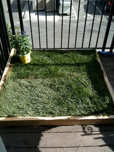 good tutorial for making a patio potty for small dogs. nothing too exciting, looks really easy to do.