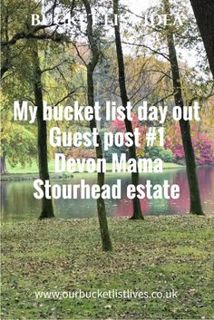 My bucket list day out – Guest post #1 – Devon Mama