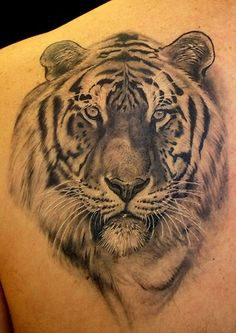 I always wanted a tiger tattoo but I have seen sooo many crappy ones, this one is awesome