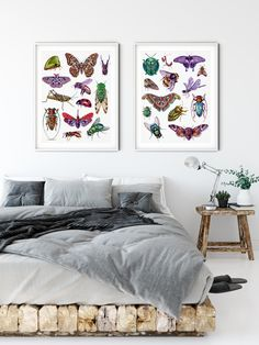 Posters of watercolor insects by Martha Iserman aka Big Red Sharks Studios Sharks, Insects, Studios, Illustration Art, Gallery Wall, Tapestry, Posters, Watercolor, Big