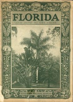 Florida and How to Get There Southern Railway System Vintage Florida, Old Florida, Naples Florida, Florida Travel, Florida Beaches, South Florida, Clearwater Florida, Tampa Florida, Beach Travel