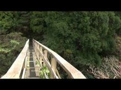 Azores Trail Run 2014 - Teaser - YouTube The event will take place on the 24th of May, the European Day of Parks, and will be divided in two competitions, the 10 Volcanos Trail and the Faial´s Coast to Coast Ultra Trail. #Portugal