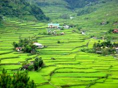 One of my favorite places--Banaue Rice Terraces, Baguio, Philippines Philippines Country, Philippines Travel, Baguio Philippines, Exotic Beaches, Tropical Beaches, Places To Travel, Places To See, Banaue Rice Terraces, Mindanao
