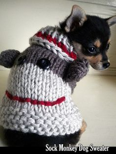 Make this cute Sock Monkey Dog Sweater by Janet Jameson with Lion Brand Vanna's Choice! Find the pattern now on Ravelry! Dog Sweater Pattern, Crochet Dog Sweater, Sweater Knitting Patterns, Loom Knitting, Crochet Patterns, Crochet Pet, Crochet Dog Clothes, Pet Clothes, Dog Clothing