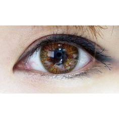 Bloggers highly recommend NEO lucky Clover coloured contact lenses for a natural yet stunning appearance. LEARN MORE >> http://www.eyecandys.com/clover-4-tone-series-14-2mm/