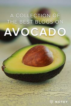 A Collection of the Best Avocado Recipes from Bloggers