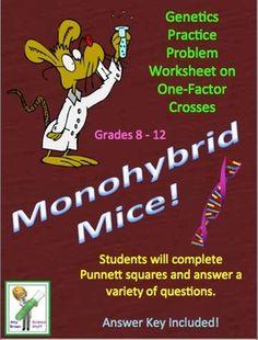 Free. Monohybrid Mice! (Free Monohybrid Genetics Problems)