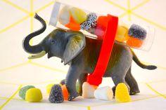 Een originele traktatie voor tijdens een verjaardag: een vrolijk beest met snoep op z'n rug! Lees op ons blog hoe je deze maakt.