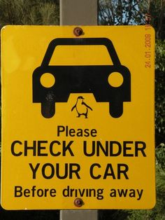 funny road signs - Google Search