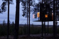 Treehouse hotels treehouses trees treehotel sweden