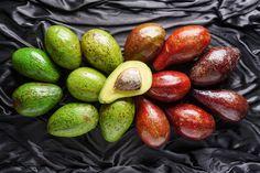 L'avocado è un frutto sempre più apprezzato e proprio per tale motivo la produzione di avocado in centro e sud America è più che triplicata negli ultimi anni. Se anche voi adorate il suo sapore, continuate a leggere i suggerimenti presenti qui di seguito: 5 piatti che vi faranno letteralmente impazzire! 5- Il guacamole Impossibile …