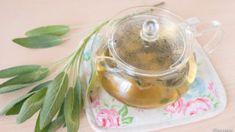 とまらない美味しさ!きゅうりのパリパリ漬け | スナログ Sage Herb, Herbs, Food, Essen, Herb, Meals, Yemek, Eten, Medicinal Plants
