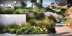 modern landscaping - Google 搜尋