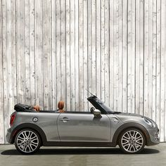 cool The best adventures are unplanned. So we made the #MINIConvertible to thrive on ... MINI CONVERTIBLE Check more at http://autoboard.pro/2017/2017/02/08/the-best-adventures-are-unplanned-so-we-made-the-miniconvertible-to-thrive-on-mini-convertible/