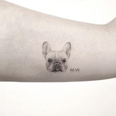 Tiny tattoo. black and grey tattoo. Pug tattoo by Sanghyuk Ko