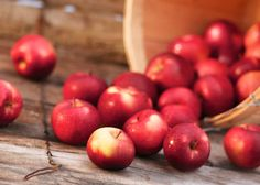 Magickal Aspects of Apple. This valued and widely available fruit is the center of much history, myth & lore. Learn more about the wonderful uses of apple. Dried Apples, Fresh Apples, Bobbing For Apples, Cranberry Bread, Kitchen Witchery, Seasonal Celebration, Cinnamon Almonds, Garden Nursery, Health