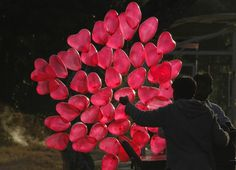 Heart-shaped balloons -- a universal sign of love for Valentine's Day - PhotoBlog