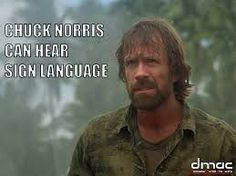 Chuck Norris memes Stupid Funny Memes, Hilarious, Chuck Norris Memes, Jokes Pics, You Make Me Laugh, Famous Movie Quotes, Historical Quotes, Funny Comics, I Laughed