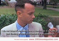 Forrest Gump (1994)   1001 Movie Quotes
